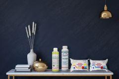 Reinigungspakete Homecare