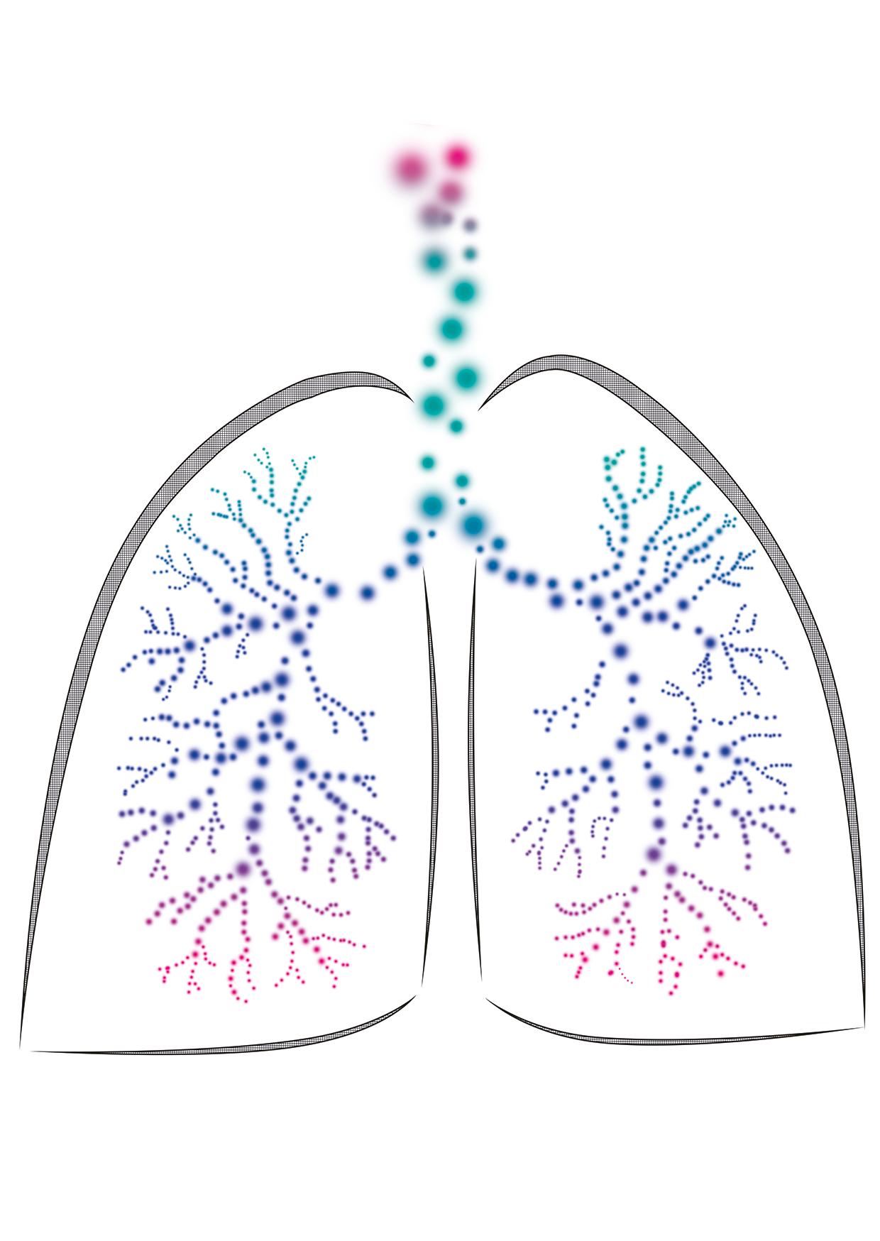 Threshold IMT - Atemtrainer für die Einatemmuskulatur